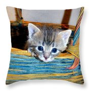 Basket Of Love Throw Pillow