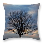 Basking In The Pink And Blue Sky Throw Pillow