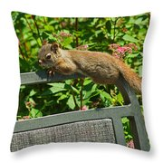 Basking Squirrel Throw Pillow