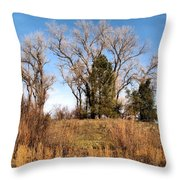Bass Pond Trees 2012 Throw Pillow