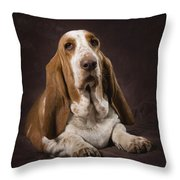 Basset Hound On A Brown Muslin Backdrop Throw Pillow