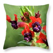Bat Face Cuphea Throw Pillow