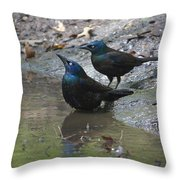 Bathing Partners Throw Pillow