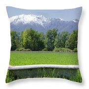 Bathtub On A Green Field Throw Pillow