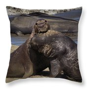 Battle On Throw Pillow