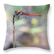 Battling Against The Elements Of Nature Throw Pillow