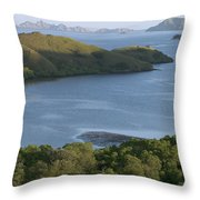 Bay And Outlying Islands Off Rinca Throw Pillow