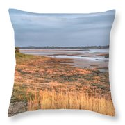 Bay At Shannon Airport Ireland 4 Throw Pillow