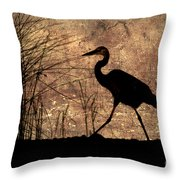 Bayou Walk Throw Pillow