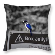 Be Warned Throw Pillow