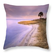 Beach Along Saint Josephs Bay Florida Throw Pillow