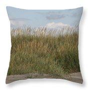 Beach Bluff Throw Pillow