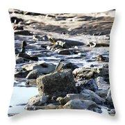 Beach Dweller Throw Pillow