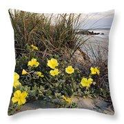 Beach Evening Primrose On Folly Beach - D001782 Throw Pillow