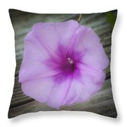 Beach Glory Squared Throw Pillow