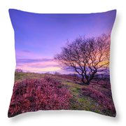 Beacon Hill Sunrise 1.0 Throw Pillow