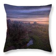 Beacon Hill Sunrise 6.0 Throw Pillow