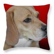 Beagle - A Hound's Hound Throw Pillow by Christine Till
