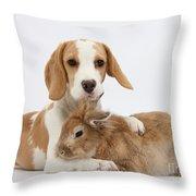 Beagle Pup And Rabbit Throw Pillow