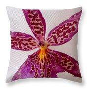 Beallara Marfitch - Howard's Dream - Orchid Throw Pillow