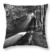 Beam Throw Pillow