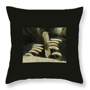 Bear Claws Throw Pillow