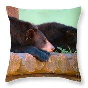Bear Nap Throw Pillow