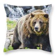 Bear On The Prowl. Throw Pillow