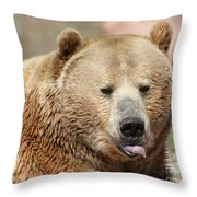 Bear Rasberry Throw Pillow