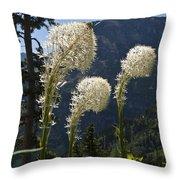 Beargrass Squaw Grass - 4 Throw Pillow