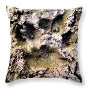 Bears Here Throw Pillow