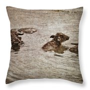 Beast Of Burden Throw Pillow