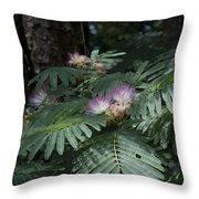 Beautiful Alabama Mimosa Silk Tree Throw Pillow