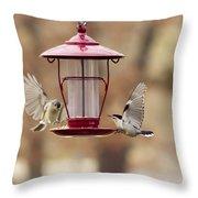 Beautiful Birds Throw Pillow