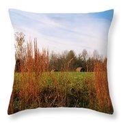 Beautiful Day Throw Pillow
