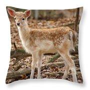 Beautiful Fawn Throw Pillow