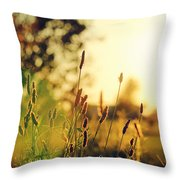Beautiful Fuzzy Life Throw Pillow