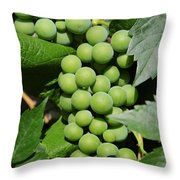 Beautiful Grapes Throw Pillow