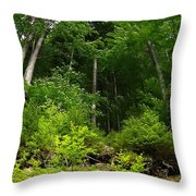 Beautiful Green Throw Pillow