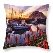 Beautiful Morro Bay Throw Pillow