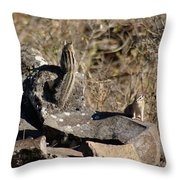 Beautiful Munks Throw Pillow