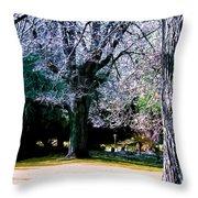 Beautiful Parkland Digital Drawing Throw Pillow