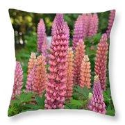 Beautiful Pinks Throw Pillow