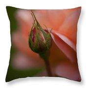 Beautiful Potential Throw Pillow
