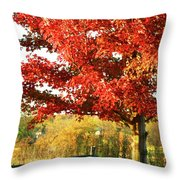Beautiful Red Maple Tree  Throw Pillow