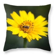 Beautiful Small World Throw Pillow