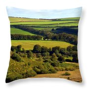 Beautiful Somerset Throw Pillow