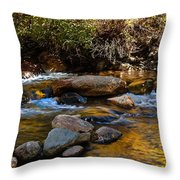 Beautiful Stream Throw Pillow