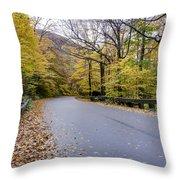 Beautiful Vermont Scenery 13 Throw Pillow