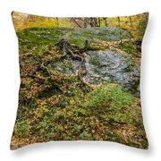 Beautiful Vermont Scenery 14 Throw Pillow